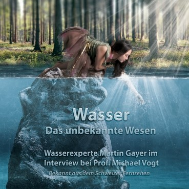 DVD Interview - Martin Gayer und Prof. Michael Vogt